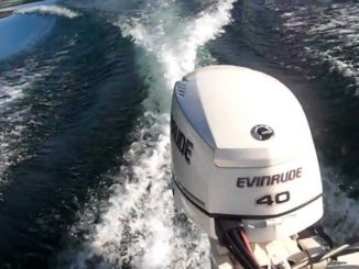 DOWNLOAD 2010 Evinrude E-TEC Service Manual 40 50 60 75 HP