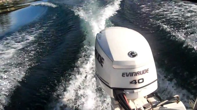 Download 2010 Evinrude E